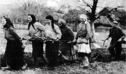 д. Дубиновка, 1946 год. На усадьбе М.И. Человского