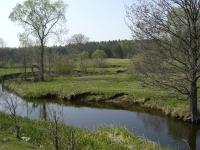 Наша речка не величка