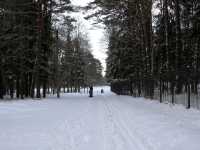 Начало лыжни